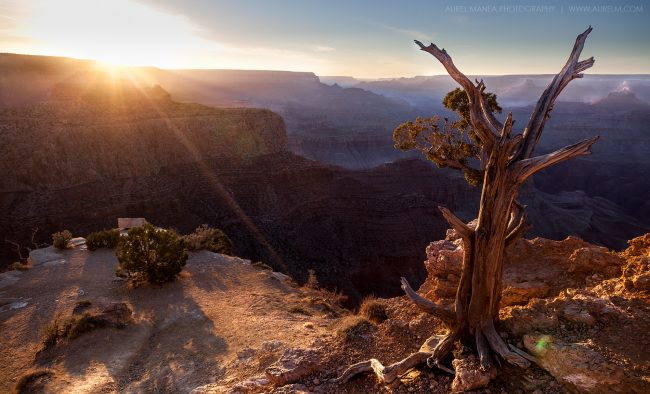 Gallery-Grand-Canyon-sunset-02