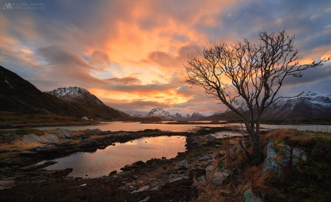 Gallery-Lofoten-landscape-sunset