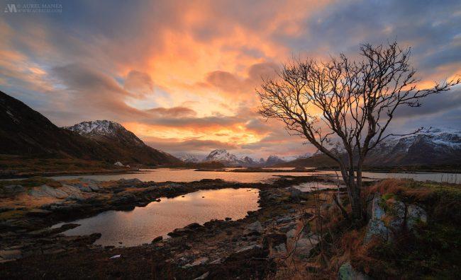 Gallery-Lofoten-landscape-sunset