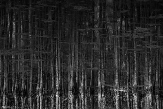 Gallery-Minimalism-61