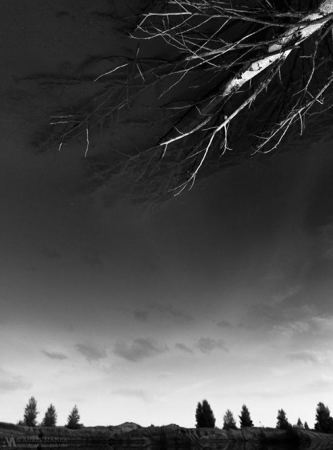 Gallery-Minimalism-68