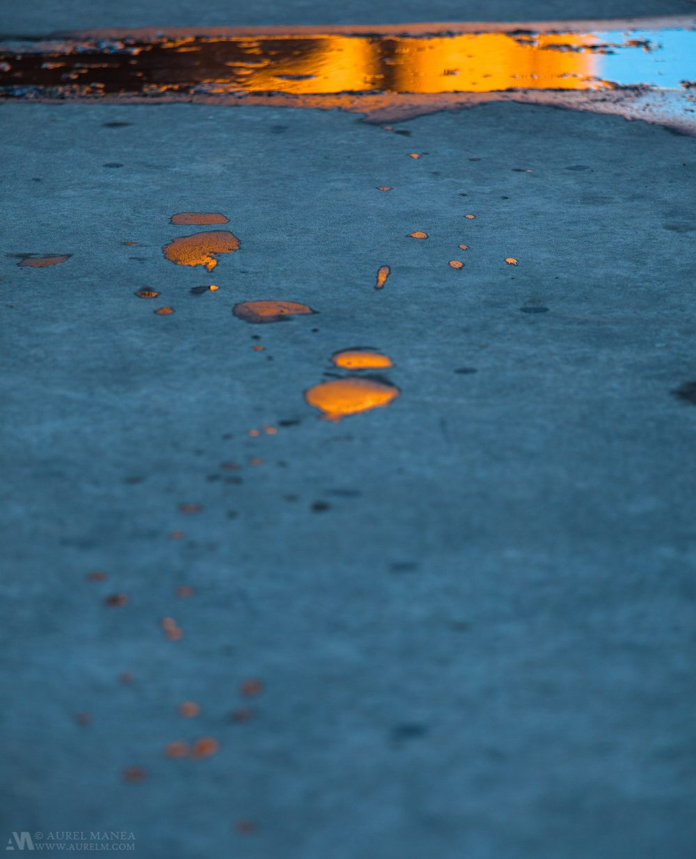 Gallery-Reflections-on-puddle-01
