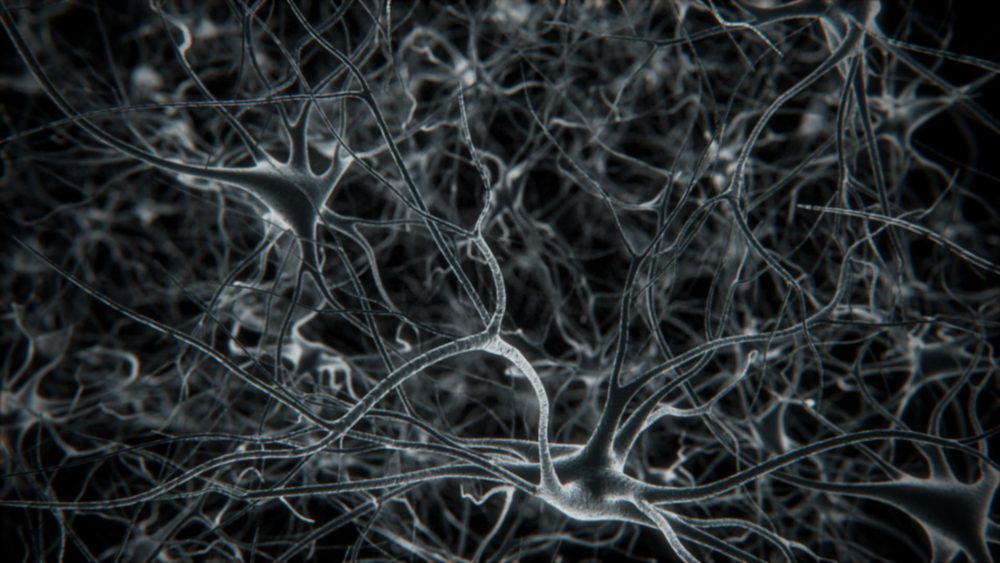parallax_neurons-01