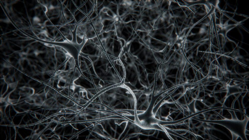 parallax_neurons-01